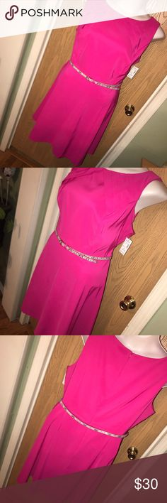 """Pink belted fit & flare dress Super pretty and chic pink fit and flare dress with pleated detail on the shoulders. Comes with snake skin print belt. Has zipper on the back. 27"""" from armpit to armpit, 31"""" from armpit to hem. Dress Barn Dresses"""