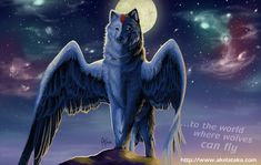 Anime Wolf With Wings twoodcc Apr PM I should have a new system tomorrow, I will get it set up with Ubuntu to do bigadv. Anime Wolf, Fantasy Kunst, Fantasy Art, Mystery, Fantasy Wolf, Glitter Graphics, Anime Animals, Magical Creatures, Fantasy Creatures