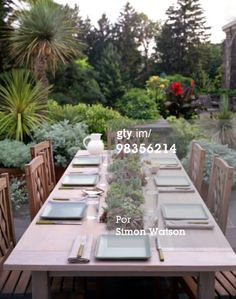 Fotografía de stock: Dining table with tropical garden