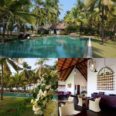 #yoga & #WinterSun doesn't come in a prettier package. Retreat to Northern a Kerala www.elisawilliamsyoga.com/#!/yoga-in-kerala Now booking for Feb 2016