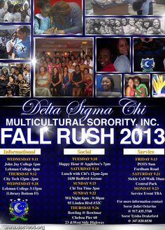 DSC Fall Rush 2013