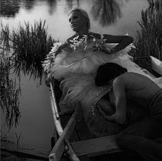Swan Lake | Homotography