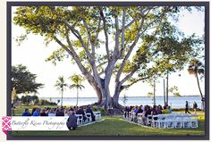 Edison Home Wedding nder the Fig Tree!