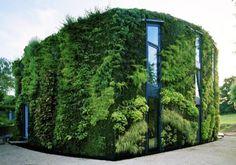 Casa increíble jardín vertical en Bélgica.