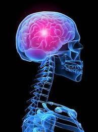 Agopuntura per il trattamento e la prevenzione dell'encefalopatia    http://www.unoduetre.eu/2012/06/14/agopuntura-per-il-trattamento-e-la-prevenzione-dellencefalopatia/