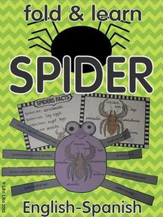 Spiders facts Fold and Learn English-Spanish