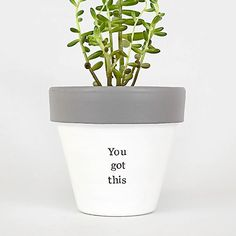 You got this desk decor cubicle decor desk accessories | Etsy Christmas Gifts For Brother, Gifts For Family, Painted Plant Pots, New Job Gift, Congratulations Gift, Indoor Plant Pots, Teacher Favorite Things, Cubicle, Desk Accessories