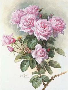 "Paul de Longpré ""Roses and Bumblebees"" - does anybody quite paint roses like this guy.  breathtaking."