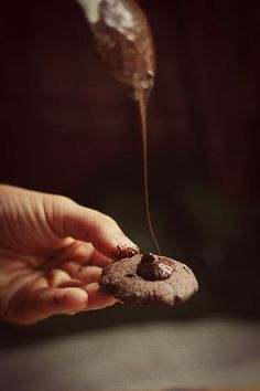 Double Chocolate Peppermint Cookies (Vegan + Refined Sugar Free + All Natural)