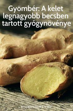Természet patikája - egészséges ételek - Gyömbér: A kelet legnagyobb becsben tartott gyógynövénye e-book