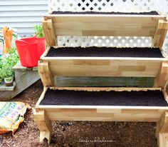 Container Gardening 101 | Angie The Freckled Rose