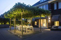 Pergola Ideas For Deck Restaurant En Plein Air, Outdoor Restaurant, No Grass Backyard, Backyard Landscaping, Pergola Lighting, Landscape Lighting, Exterior Tiles, Patio Gazebo, Outdoor Living