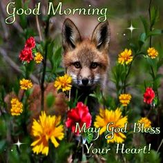 Good Morning, May god Bless Your Heart!