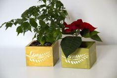 Custom Wooden Herbs Holder / Planter by Art Glamour | Hatch.co