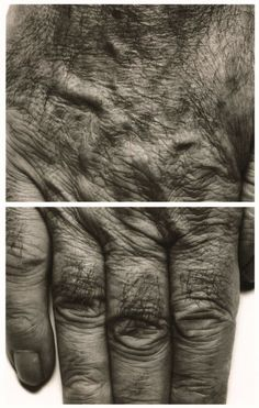 John Coplans. 'Self Portrait (Hands)' 1988Self Portrait (Hands) 1988 Silbergelatinepapier Albertina, Wien