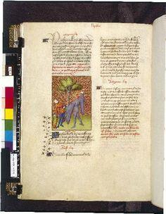 Harley 4431 fol 119v (Apollo killing Ganymede). Paris, France 1410-1414.