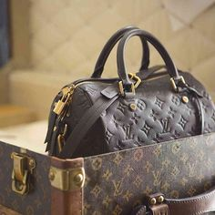 Louis Vuitton Speedy Bandouliere and Suitcase