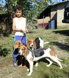 Con el apoyo de estudiantes de la Universidad Nacional, Élver Marín, que tiene un criadero de sabuesos en Santanader, comenzó a caracterizar el perro de cacería tradicional en el país. Beagle, Chihuahua, Ideas Para, Bloodhound Dogs, Community Service, Factory Farming, Pets, Animales, Students