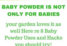 8 Ways to Use Baby Powder in the Garden