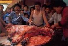 All for the sake of Fur? These people should know what it feels like to be skinned alive!