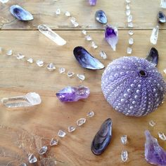 Seashells Crystal grid: from sea change bliss Crystal Magic, Crystal Grid, Crystal Healing, Crystal Mandala, Minerals And Gemstones, Rocks And Minerals, Gemstones Meanings, Wicca, Healing Stones