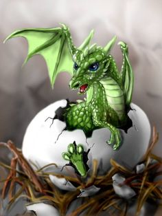 Baby dragon hatching...