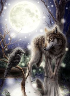 Wolf, Crow by SheltieWolf - Nyy'xai Raven and Nai'xyy Wolf - My two Spirit Totem Animals are the Wolf and the Raven: Wolves and Ravens have a symbiotic relationship in the wild. Ravens have been observed around wolf families at rest, and have even gently pulled the tails of pups in order to get a reaction, just as they do with the adults