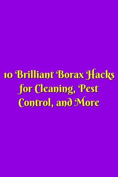 Diy Pest Control, Pest Control Services, Diy Crafts Hacks, Diy And Crafts, Do It Yourself Crafts, Cleaning, Check, Green, Diy Crafts