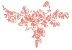 Antique Graphic Engravings - French Roses - The Graphics Fairy --- print from Paris, 1850s