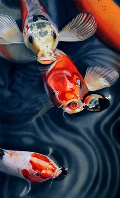 Feeding Frenzy Painting by Denny Bond - Feeding Frenzy Fine Art Prints and Posters for Sale