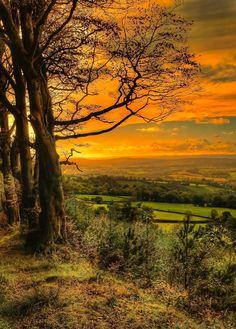 Devon, England by photofervor images on 500px