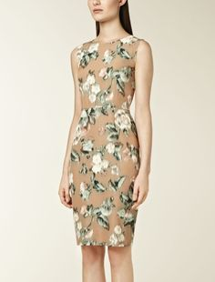 Ball-gown dress with floral print, camel - Max Mara United Kingdom