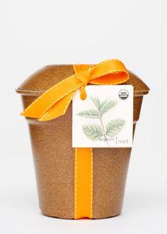 Homegrown Herb Kit   Rodale's