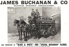 Black & White Scotch Ad., 1900