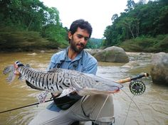 Tsimane river cachara catfish on the fly.