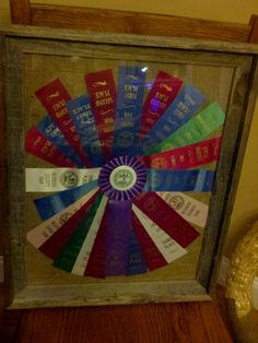 My boys ribbons from county fair
