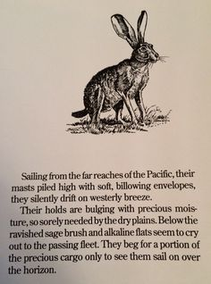 Sailing from the far reaches of the Pacific, their masts piled high with soft, billowing envelopes, they silently drift on westerly breeze...