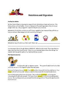 Cartoon strip of food through digestive system