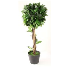 Artificial Pyramid Bay Tree Indoor Outdoor 70cm Patio Plants, Potted Plants, Pet Fresh, Topiary Garden, Artificial Tree, Lush Green, Green Leaves, Garden Inspiration, Cosy