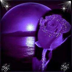 Love is worth more than anything Purple Art, Purple Love, All Things Purple, Shades Of Purple, Purple Flowers, Purple And Black, Purple Stuff, Heart Wallpaper, Purple Wallpaper