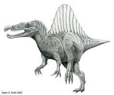 dinosaur drawings   Interview with Adam Smith   Dave Hone's Archosaur Musings