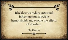 Blackberries reduce intestinal inflammation, alleviate hemorrhoids and soothe the effects of diarrhea.