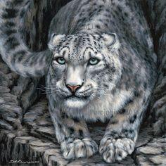 """ Snowleopard "" for sale"