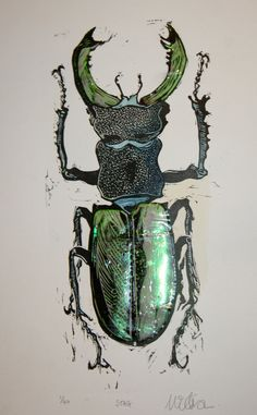 Large irridescent stag beetle. Limited Edition lino cut print with collage and hand coloring. $45.00, via Etsy.