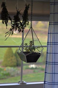 whoooaaa, way into hanging plant stuff. this is lovely. Teardrop Terrarium Kit large teardrop glass by ABJglassworks