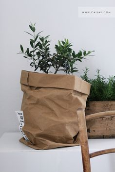 Brown paper pot covers