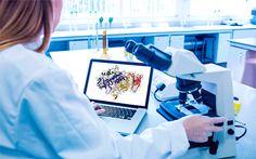 Proveedores de enzimas para investigaciones biológicas |Wako América Latina