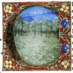 Douce Pliny - Florentine Venice 1476-45