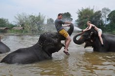 You can swim with elephants in Thailand! Added to my Bucket List!!