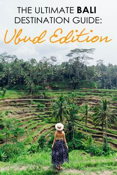 Visiting Ubud in Bali? Here is a guide to everything you need to know before you go!